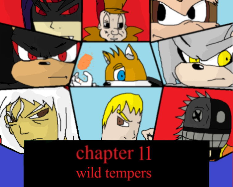 chapter-11-wild-tempers.jpg